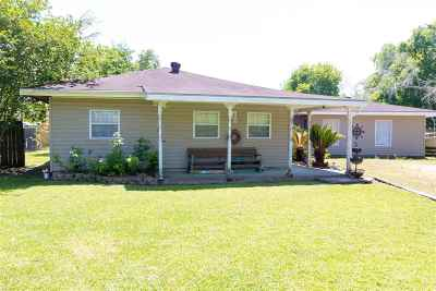 Beaumont Single Family Home For Sale: 5030 S Garden