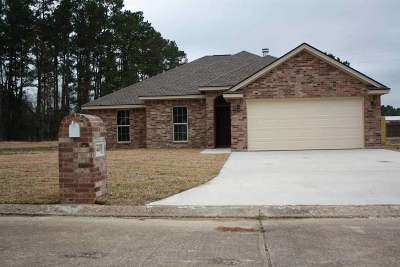 Vidor Single Family Home For Sale: 3460 Michelle