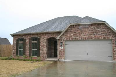 Lumberton Single Family Home For Sale: 204 Heather Lane