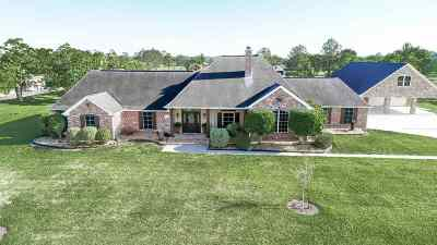 Beaumont Single Family Home For Sale: 11020 McMoore Lane