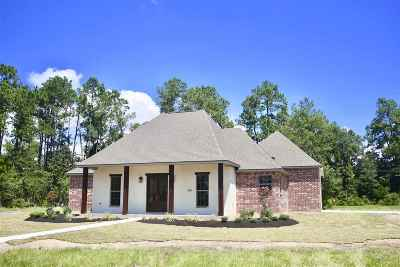 Beaumont Single Family Home For Sale: 12000 Woodland Street