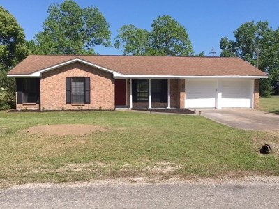 Beaumont Single Family Home For Sale: 18045 Camelia