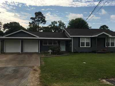 Nederland Single Family Home For Sale: 1423 Ithaca