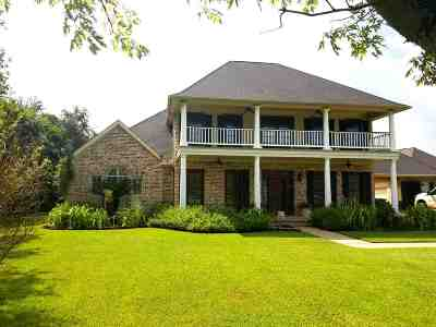 Beaumont Single Family Home For Sale: 2454 S Pine Island Road
