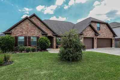 Nederland Single Family Home For Sale: 8225 Lake Placid Drive