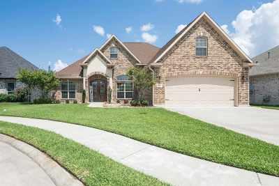 Nederland Single Family Home For Sale: 8360 Lake Placid