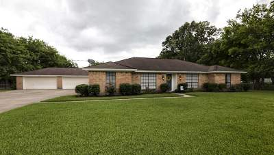 Beaumont Single Family Home For Sale: 9685 Faggard Road