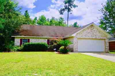 Vidor Single Family Home For Sale: 29 Heritage Dr