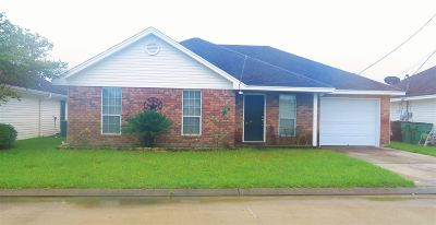 Lumberton Single Family Home For Sale: 5800 S Shadowbend