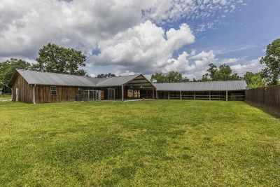 Vidor Single Family Home For Sale: 365 S Dewitt Road