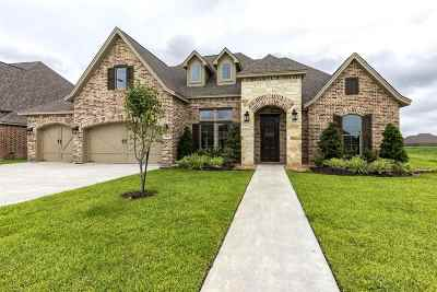Beaumont Single Family Home For Sale: 2620 Rigby