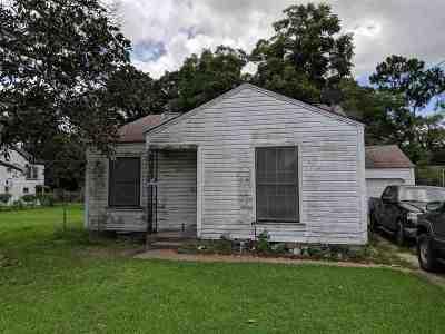 Port Arthur Single Family Home For Sale: 2419 Green Ave.
