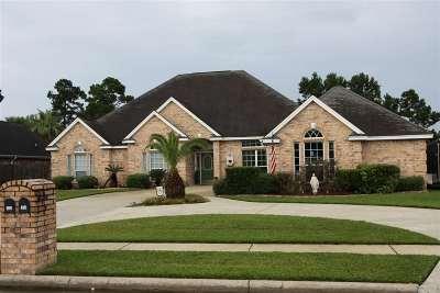 Lumberton Single Family Home For Sale: 343 Tyler