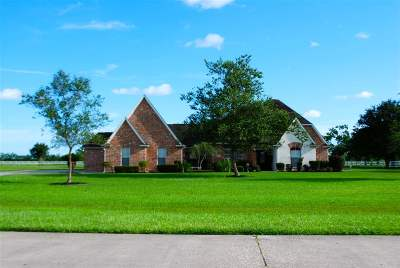 Beaumont Single Family Home For Sale: 8335 Anastasia