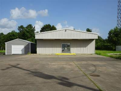 Mauriceville TX Commercial For Sale: $275,000