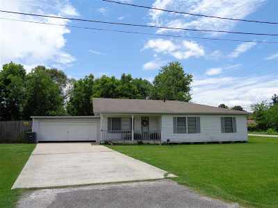 Beaumont Single Family Home For Sale: 9575 Riggs St