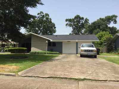 Nederland Single Family Home For Sale: 3112 Callaway Dr