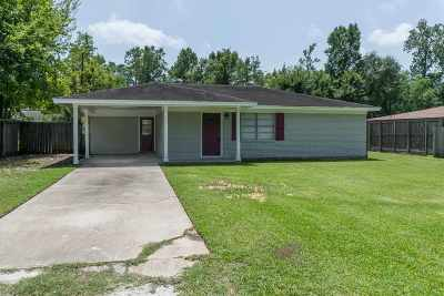 Vidor Single Family Home For Sale: 395 Texas