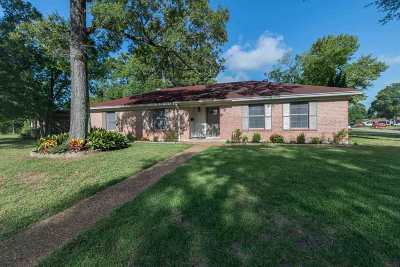 Beaumont Single Family Home For Sale: 203 Stratton