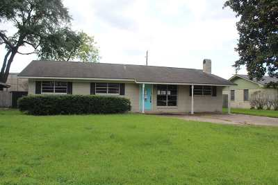 Vidor Single Family Home For Sale: 845 Lamar