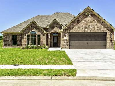 Beaumont Single Family Home For Sale: 6225 E Windemere Dr.