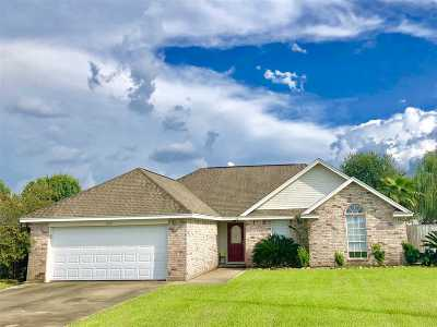 Lumberton Single Family Home For Sale: 6030 Crockett
