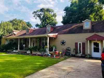 Port Arthur Single Family Home For Sale: 4120 Ashland Dr