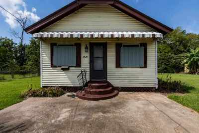 Beaumont Single Family Home For Sale: 2035 Pine Street