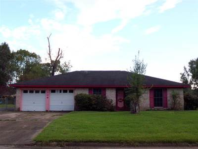 Beaumont Single Family Home For Sale: 109 Briggs