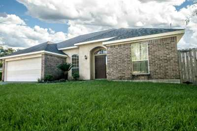 Beaumont Single Family Home For Sale: 5390 Dawn