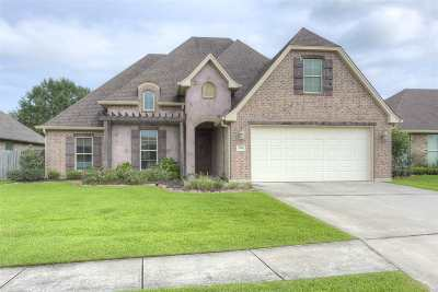 Nederland Single Family Home For Sale: 190 Sterling Ridge Drive