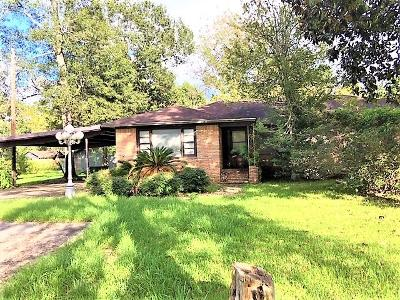 Vidor Single Family Home For Sale: 2040 N Main