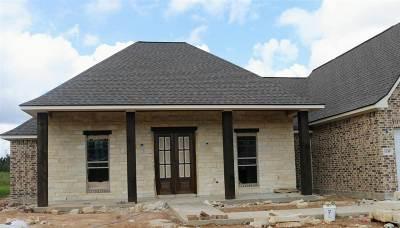 Lumberton Single Family Home For Sale: 1335 Kalas Cir