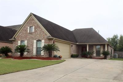 Beaumont Single Family Home For Sale: 5635 Nicole Ln