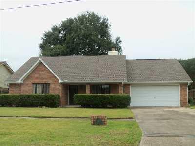 Nederland Single Family Home For Sale: 2316 Oak North