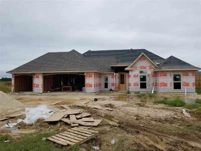 Lumberton Single Family Home For Sale: 419 Riverbirch Drive