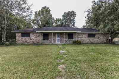 Beaumont Single Family Home For Sale: 7375 Willis Lane