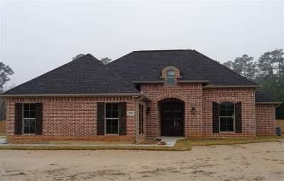 Vidor Single Family Home For Sale: 5747 N Main St