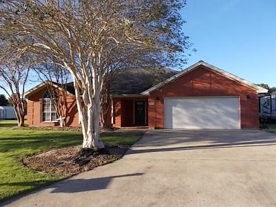 Vidor Single Family Home For Sale: 3275 Michelle Ave.