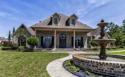 Lumberton Single Family Home For Sale: 11275 Plantation Oaks Lane