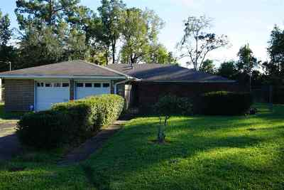 Beaumont Single Family Home For Sale: 520 E Gill Street