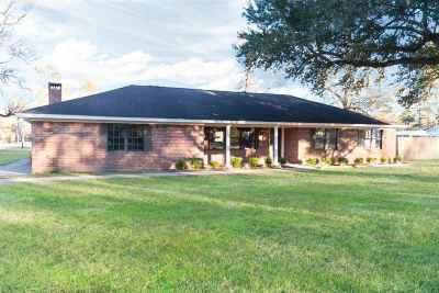 Vidor Single Family Home For Sale: 205 N Timberlane