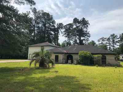 Bevil Oaks Single Family Home For Sale: 13495 Inwood Dr