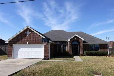 Lumberton Single Family Home For Sale: 5580 Perrell