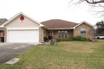 Nederland Single Family Home For Sale: 2802 Oak West