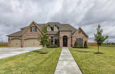 Beaumont Single Family Home For Sale: 14980 Michelle Lane