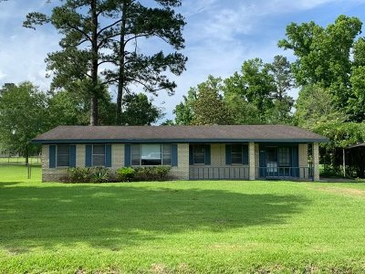 Kountze Single Family Home For Sale: 505 Smith St.