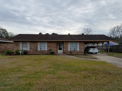 Vidor Single Family Home For Sale: 365 Palm St
