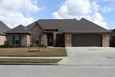Lumberton Single Family Home For Sale: 235 Chaple Creek