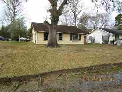 Beaumont Single Family Home For Sale: 4880 Park St